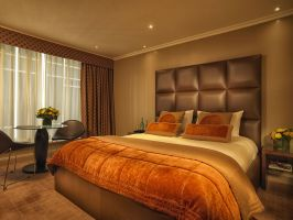 Hotel Radisson Blu Edwardian Heathrow image