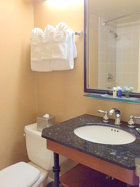 https://www.hotelsbyday.com/_data/default-hotel_image/0/2515/new-bathroom.jpg