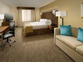 Hotel Holiday Inn El Paso Airport image