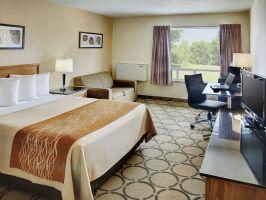 Hotel Comfort Inn Moncton East image