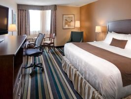 Hotel Best Western Plus Winnipeg Airport image