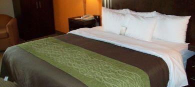 Comfort Inn & Suites Houston
