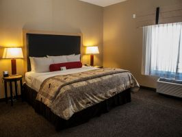 Hotel Cambria Suites Denver Airport image