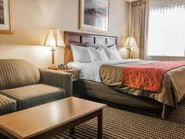 Hotel Comfort Inn Utica image
