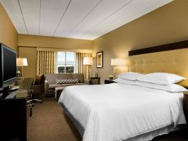 Hotel Sheraton Boston Needham Hotel image