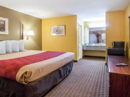 Hotel EconoLodge Inn & Suites image
