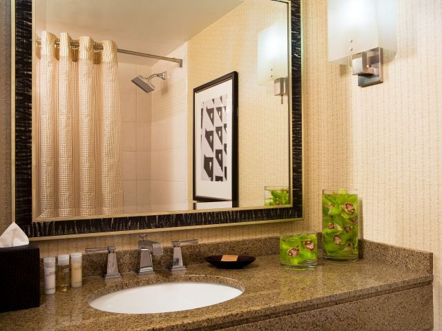 https://www.hotelsbyday.com/_data/default-hotel_image/1/9005/hyatt-regency-cambridge-overlooking-boston-p095-bathroom-adapt-4x3-640-480.jpg
