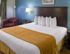 Hotel OYO Town House Houston image