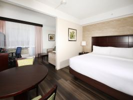Hotel Holiday Inn Hotel & Suites Windsor Ambassador Bridge image