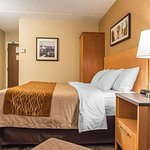 https://www.hotelsbyday.com/_data/default-hotel_image/2/10616/guest-room-with-king-1.jpg