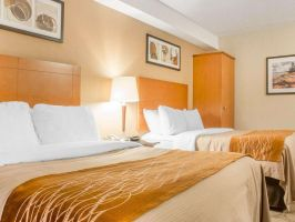 Hotel Comfort Inn Parry Sound image
