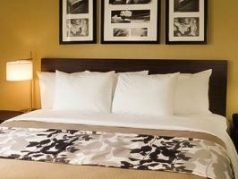 Hotel The Vue Inn image