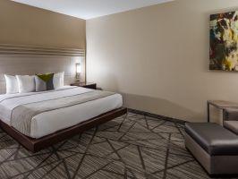 Hotel Best Western Plus Inn & Suites Houston image
