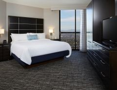 Hotel Embassy Suites By Hilton LAX Airport North image