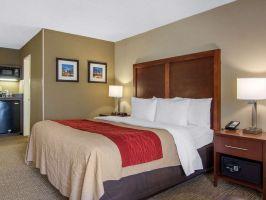Hotel Comfort Inn Sandy Springs - Perimeter image