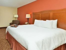 Hotel Hampton Inn Chicago-Carol Stream image