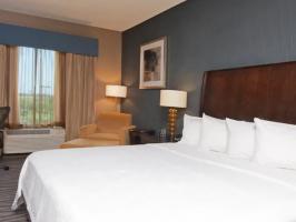 Hotel Hilton Garden Inn Fort Worth Alliance Airport image