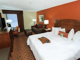 Hotel Hampton Inn Birmingham-Colonnade 280 image
