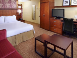 Hotel Courtyard By Marriott Tampa Oldsmar image