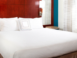 Hotel Residence Inn Lutz Northpointe image