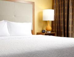 Hotel Hampton Inn & Suites Pittsburgh Airport South–Settlers Ridge image
