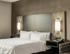 Hotel Holiday Inn & Suites Silicon Valley - Milpitas image