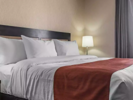 Hotel Quality Inn & Suites Kingston image