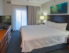 Hotel Homewood Suites By Hilton New Orleans image