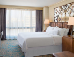 Hotel The Westin Crystal City Reagan National Airport image