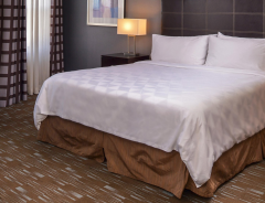 Hotel Holiday Inn Ontario Airport image