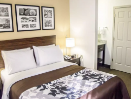 Hotel Sleep Inn Tinley Park I-80 Near Amphitheatre-Convention Center image