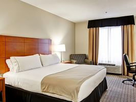 Hotel Holiday Inn Express And Suites Guelph image
